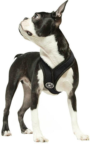 Gooby Pets #04110 Comfort X Harness  Black / Large 04110-L-BLK Harness