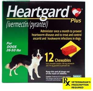 Heartgard Plus Rx Chewables for Dogs - 26-50 lbs (Green) / 12 Months - Peazz Pet