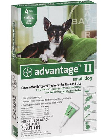 Advantage for Dogs 1-10 lbs, Green 4 Pack - Peazz Pet