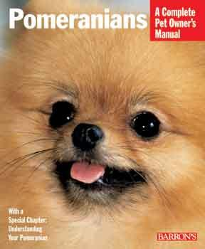 Pomeranians - Peazz Pet