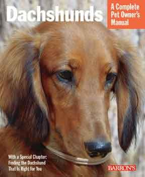 Dachshunds - Peazz Pet