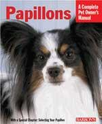 Papillons - Peazz Pet