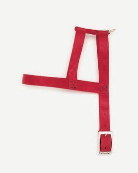"C Nyl Harness 3/4""x24""-red - Peazz Pet"