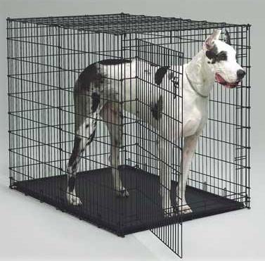 MidWest Metals 1154U Big Dog Crate - Peazz Pet