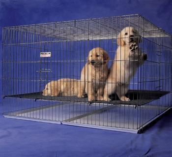 Prec Puppy Pen Chrome 36x24x30 - Peazz Pet