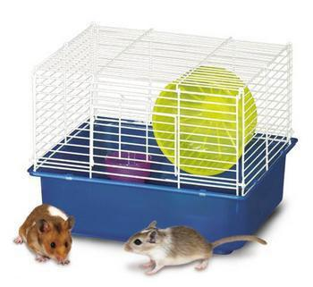 My First Home Hamster 1story 6pk (100079043) - Peazz Pet