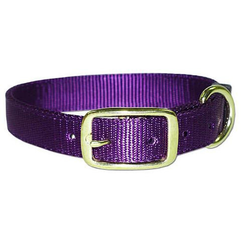 "1"" RG Bravo collar w/ brass hdwr. 19"" - Peazz Pet"