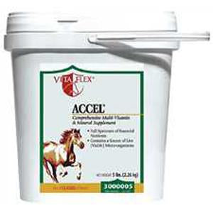 Accel Daily Equine Supplement - 30 lbs. (3000004) - Peazz Pet