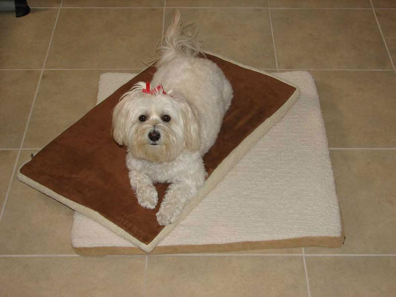 Crown Pet Mat For Slant Roof Doghouse - Small Size