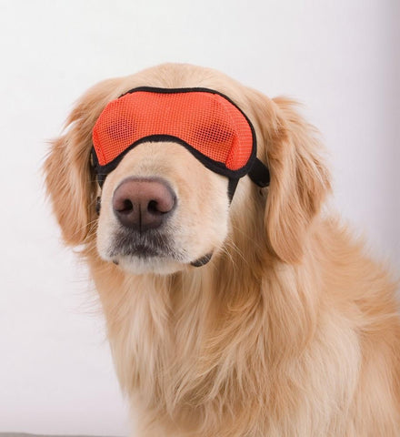 Doggles Eyewear Mesh (EYME) - Peazz Pet