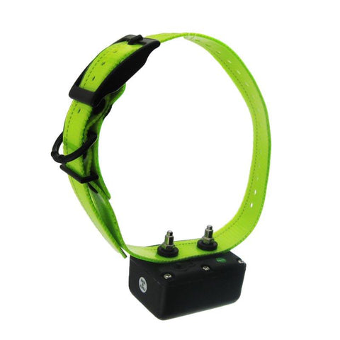 D.T. Systems H2O 1800 PLUS Add-On Collar with Green Strap - Peazz Pet