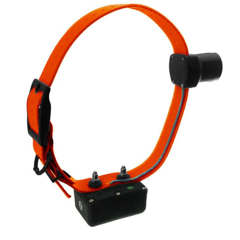 D.T. Systems H2O 1850 PLUS Add-On Beeper Collar with Orange Strap - Peazz Pet