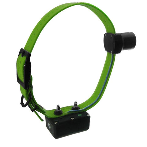 D.T. Systems H2O 1850 PLUS Add-On Beeper Collar with Green Strap - Peazz Pet