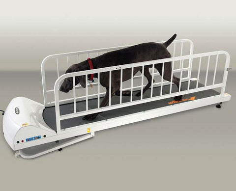 GoPet PetRun PR725 Large Breed Treadmill with Enclosure (For Dogs Up to 176 lbs.) - Peazz Pet