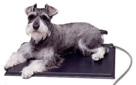 K&H Manufacturing Lectro-kennel Heated Pad - 12.5 X 18.5 ...