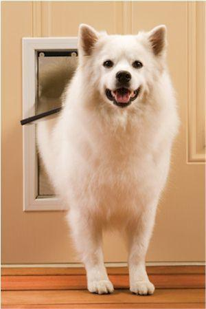 PetSafe Freedom Pet Door PPA00-10860 (Medium) - Peazz Pet