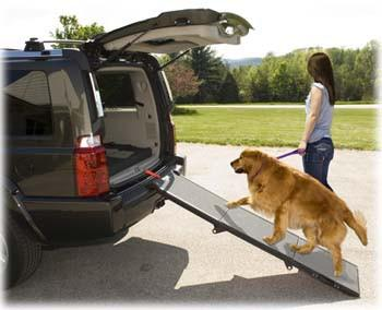 Pet Gear Portable Pet Ramp (PG9300DR) - Peazz Pet
