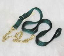 Nylon Lead with Chain & Snap - Hunter Green (17D24 DG) - Peazz Pet