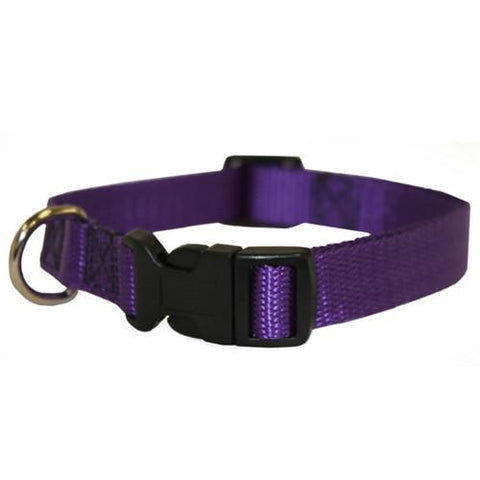 Majestic Pet Products 14in - 20in Adjustable Collar Purple, 40 - 120 lbs Dog By Majestic Pet Products - Peazz Pet