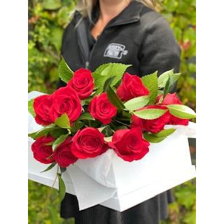 Dozen real Red or Pink Roses, delivered only in Auckland