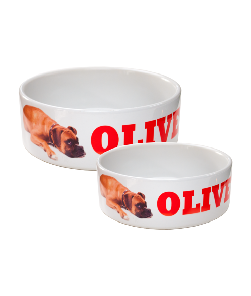 WHITE CERAMIC PET BOWL (x2020) - Custom Allstars