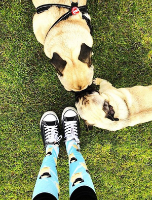 Long Pug Socks
