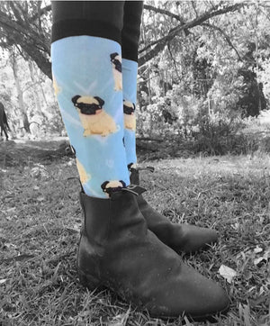 Pug equestrian light blue socks