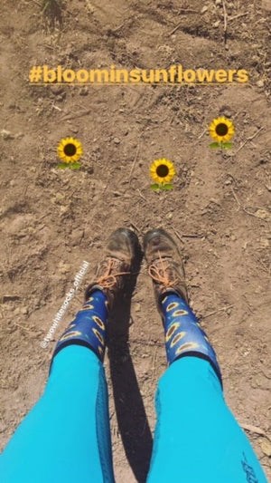 Bloomin Sunflower horse riding socks