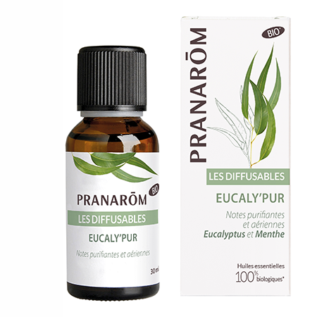 "Synergie ""Eucaly'Pur"""