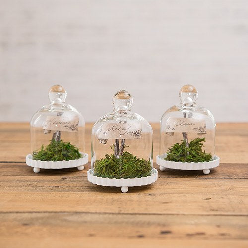 Mini Glass Bell Jar Fluted Base