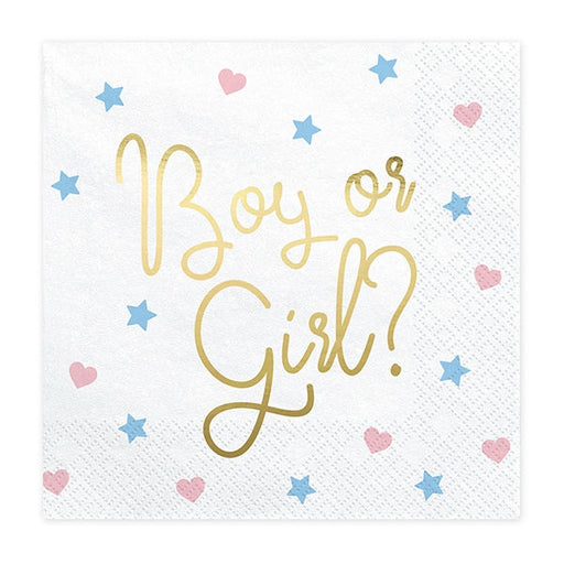 Lunch Napkins - Boy or Girl - 20pk