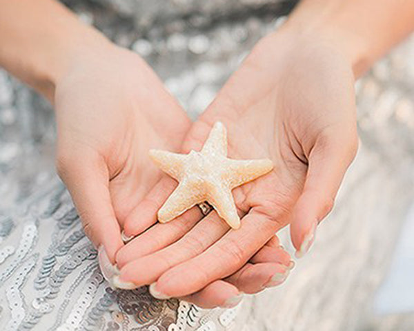 Miniature Starfish Candle In Gift Packaging Favor