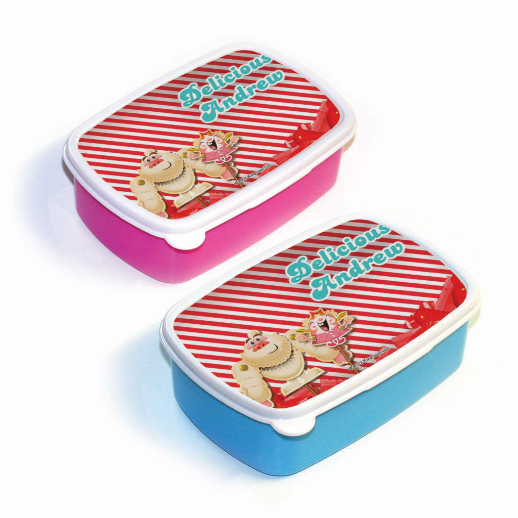 Mr Yetti & Tiffi Red Stripy Lunch Box
