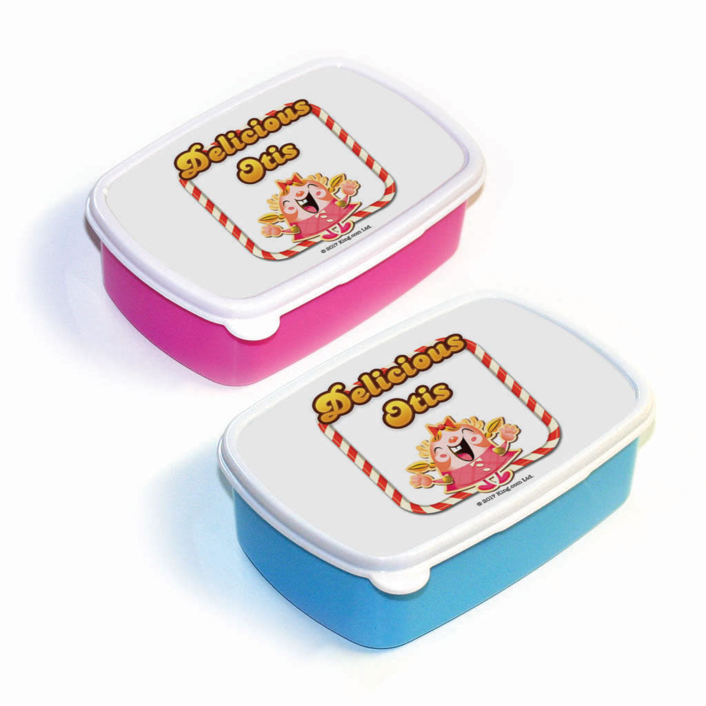 Delicious Tiffy Lunch Box