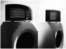 KINGSOUND Princess III Hybrid Electrostatic Speakers - DestinYAudio