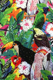 Tropical Toucan Parrot High Waisted Hot Pants Jungle Glitter MADWAG Festival Booty Shorts