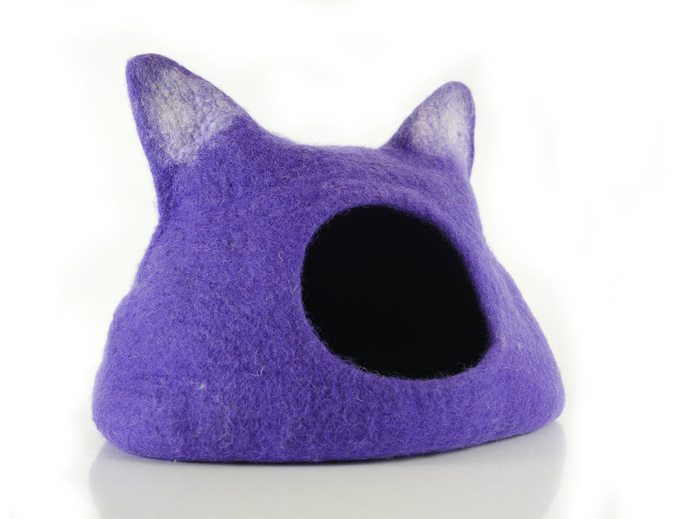 Kitten Starter Pack - Purple