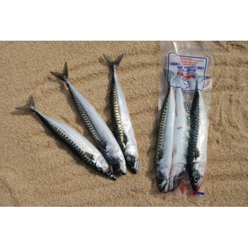 Whole Mackerel 3 per pack