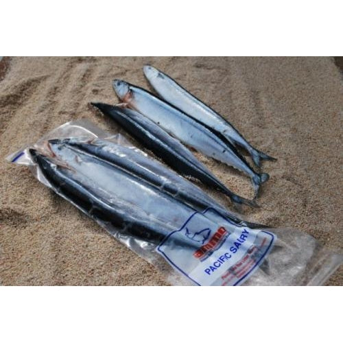 Saury/Blueys - 5 per pack