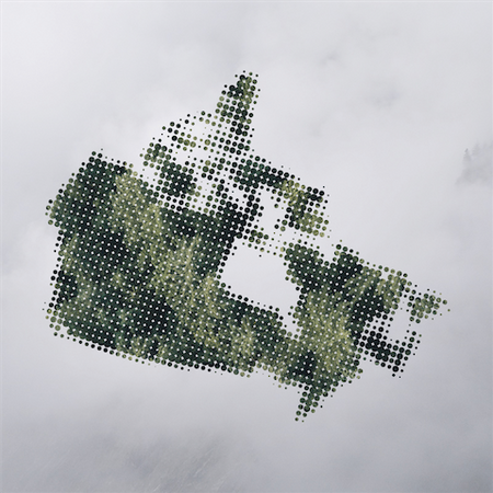 A Long-Time Coming: An Overview of Cannabis Regulations in Canada