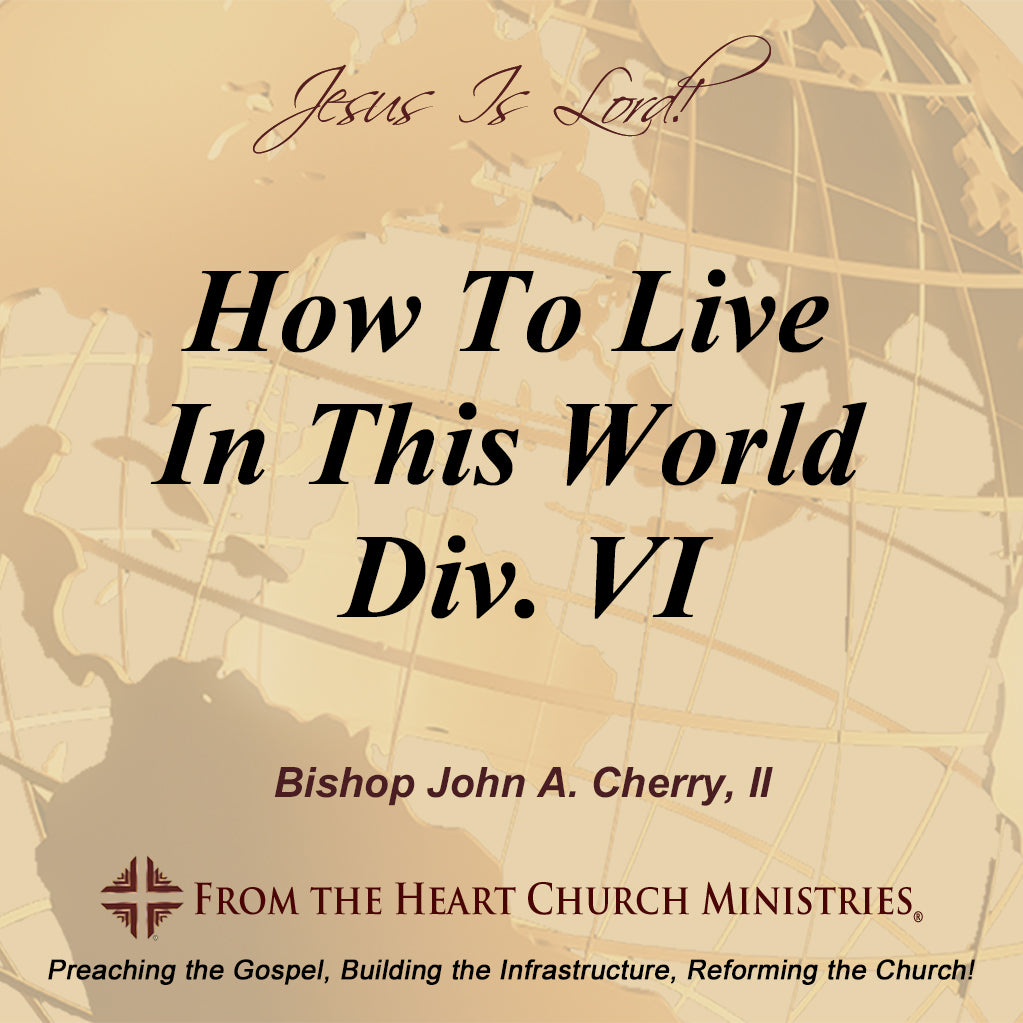 How To Live In This World Div. VI