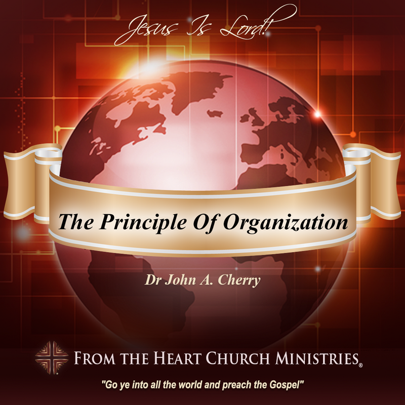 The Principle Of Organization