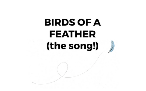 Birds of a Feather song
