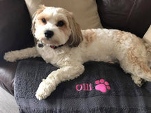 Olli on his personalised towel.
