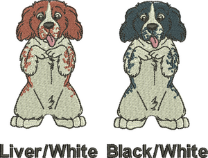 Springer Spaniel colour choice