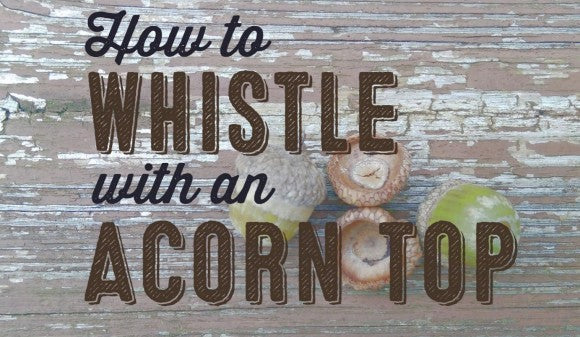Video: How to Whistle with an Acorn Top - Wolf and Iron