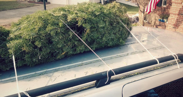 How to tie down a christmas tree to your car 18