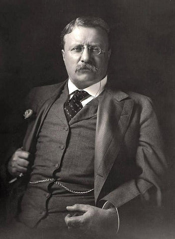 theodore roosevelt getting fat
