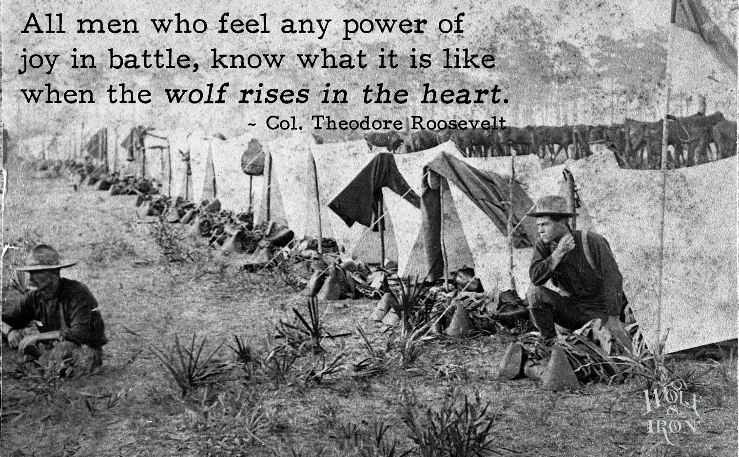 Quotes On Fdrs Death: Famous Quotes: The Wolf Rises In The Heart