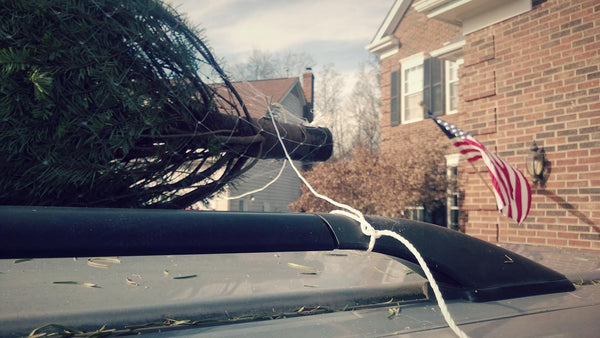 How to tie down a christmas tree to your car 3